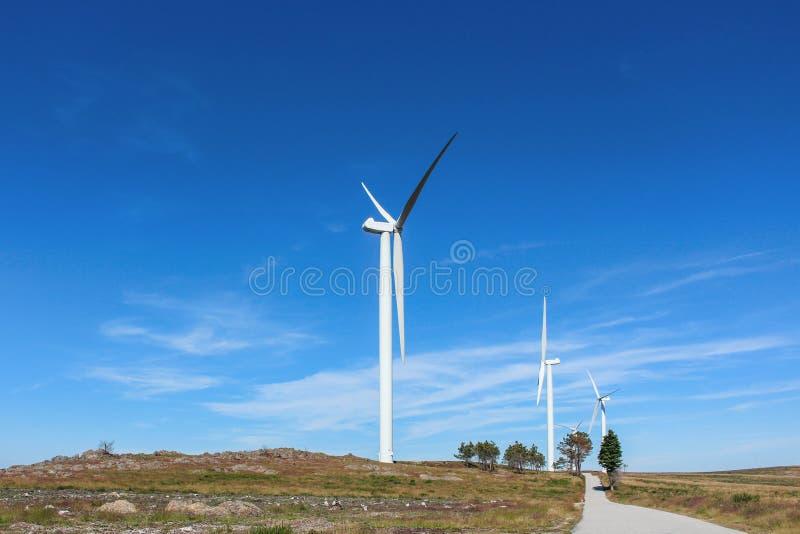 Kilka silniki wiatrowi w skalistym i opustoszałym krajobrazie z few drzewami przeciw pięknemu jasnemu niebieskiemu niebu, aveiro  obrazy royalty free