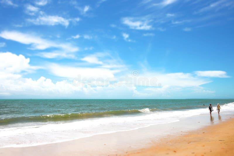 kilka spacer na plaży zdjęcie stock