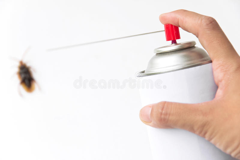 Cockroach Spray With Spray Cans Isolated Over White