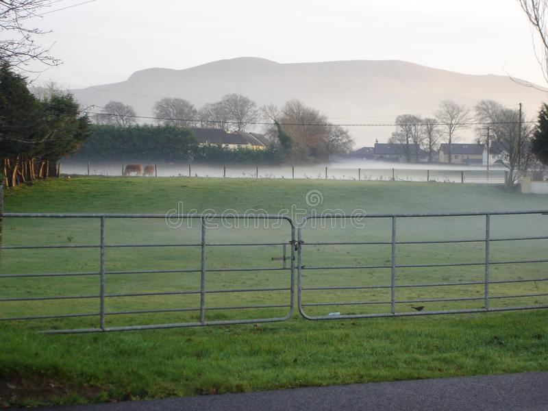 Killarney-Koppel auf Wintermorgen stockfoto
