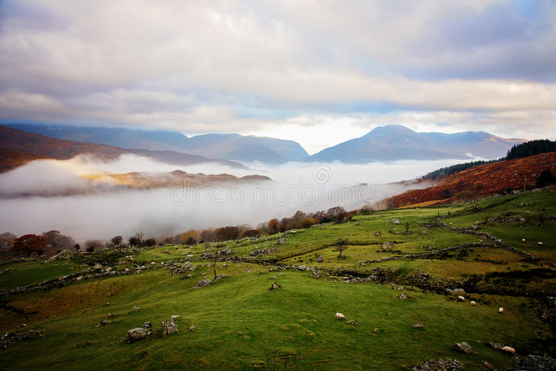 Download Killarney National Park stock image. Image of cloud, field - 81702233