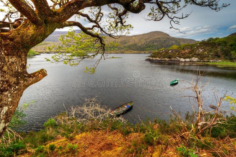 Download Killarney park narodowy obraz stock. Obraz złożonej z panorama - 24864725