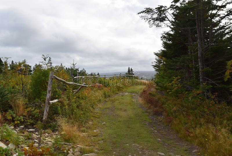 Ather Troy's Path through the meadow. Killick Coast; East Coast Father Troy's Path; East Coast trail near Torbay, Avalon Peninsula, NL Canada royalty free stock photo