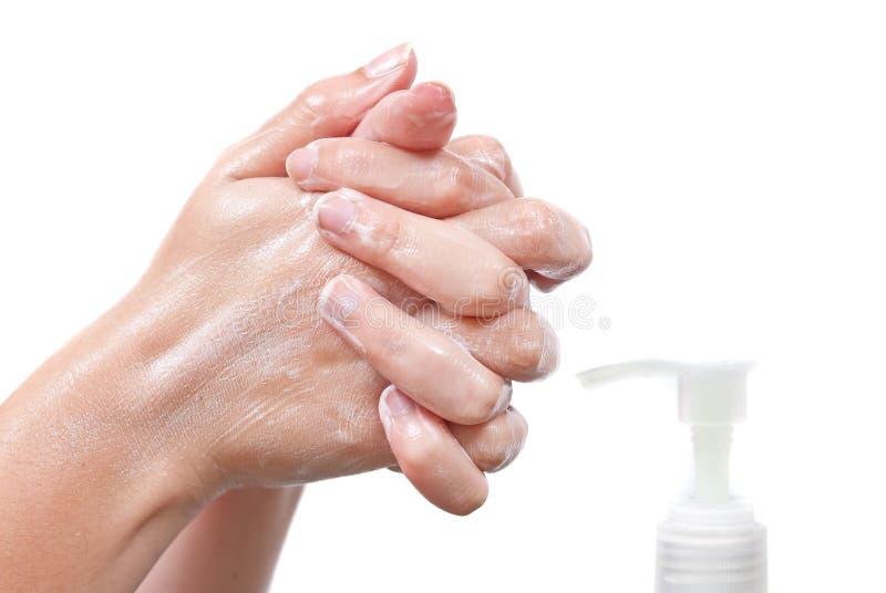 Download Killing Harmful Germs stock photo. Image of season, lather - 14871406