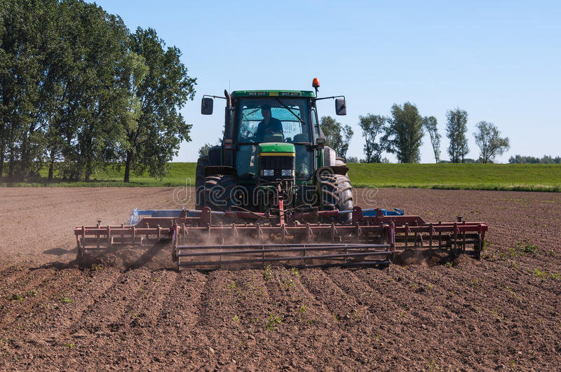 Killing the weeds with a cultivator