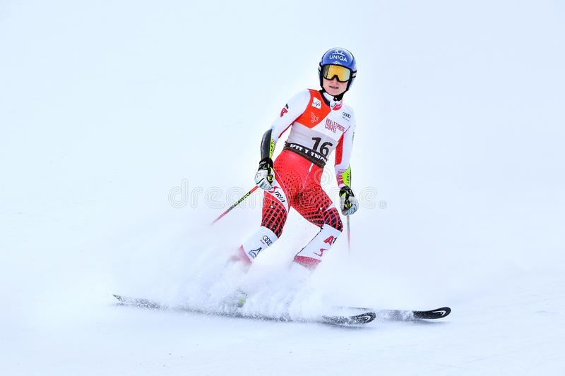 Bernadette Schild of Austria competes in the first run of the Giant Slalom. KILLINGTON, VERMONT - NOVEMBER 24: Bernadette Schild of Austria competes in the first stock image
