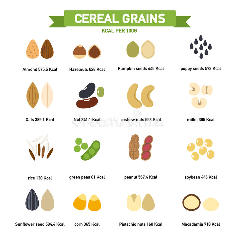 Kilocalorie dans l'infographics de gramme des grains de céréale per100 Vecteur illustration stock
