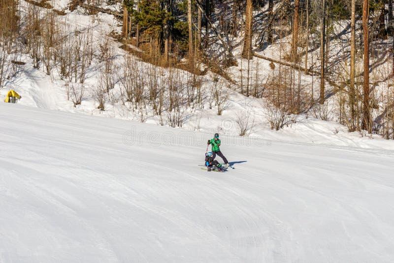 KIMBERLEY, CANADÁ - 22 DE MARZO DE 2019: persona perjudicada deportes adaptantes de los sentar-esquís que montan de una nieve de  imagen de archivo