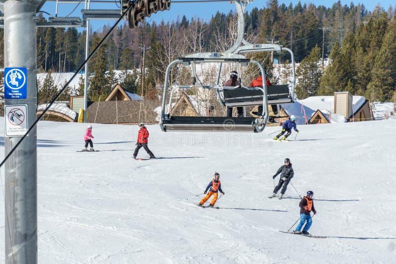 KIMBERLEY, CANADA - MAART 22, 2019: blinde Aanpassings de Sneeuwsporten van skiër die bergaf Vancouver ski?en stock afbeelding