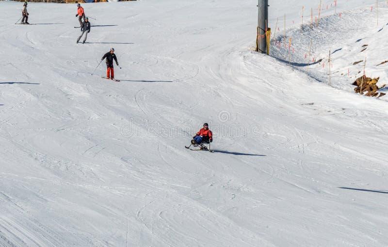 KIMBERLEY, CANADA - MAART 22, 2019: gehandicapte persoon die een Aanpassingssneeuwsporten berijden van zitten-skisvancouver royalty-vrije stock afbeelding