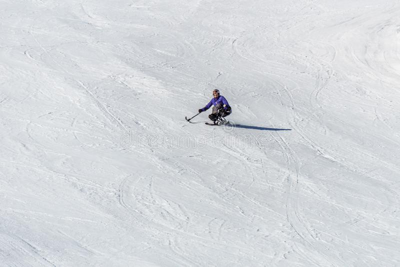 KIMBERLEY, CANADA - MAART 22, 2019: gehandicapte persoon die een Aanpassingssneeuwsporten berijden van zitten-skisvancouver stock afbeeldingen