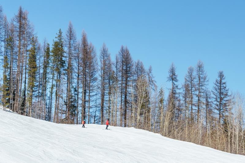 KIMBERLEY, CANADA - MARCH 19, 2019: ski track at alpine resort at sunny spring day. Blue cable chair high hill landscape lift mountain nature people recreation stock image