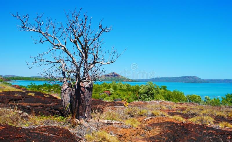 Kimberley Coast stock afbeelding