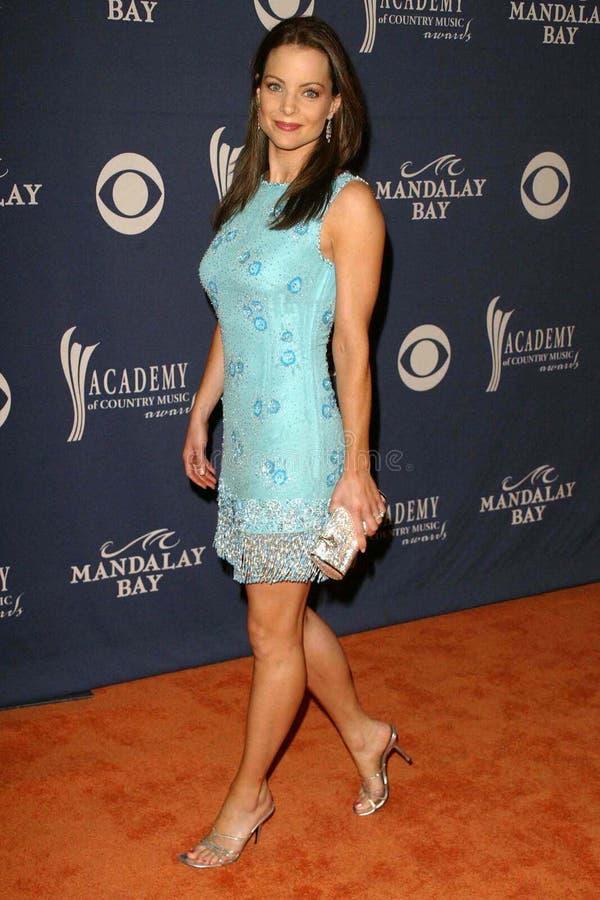 Kimberly Williams Paisley. Kimberly Williams-Paisley at the 39th Annual Academy of Country Music Awards at the Mandalay Bay Resort and Casino, Las Vegas, NV. 05 royalty free stock image