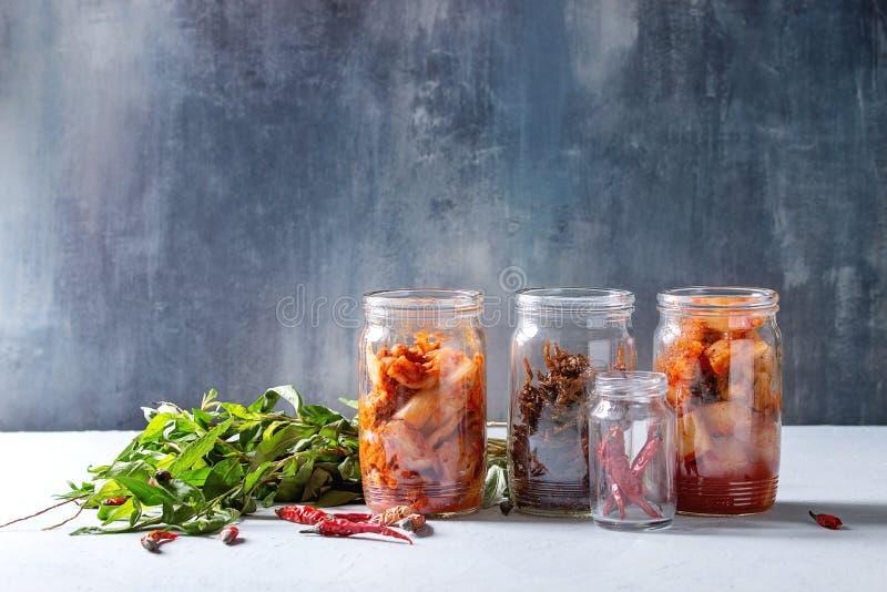 Kimchi cor?en d'ap?ritif image stock