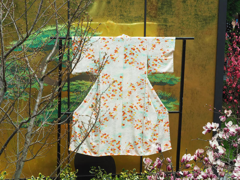 Kimono traditionnel photo stock
