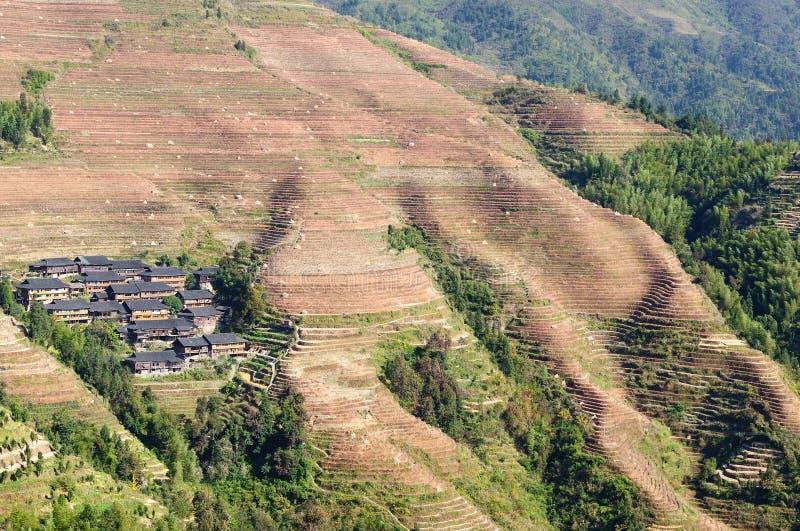 Kina landskap - ris för ryggraden för drake` s terrasserar arkivbild