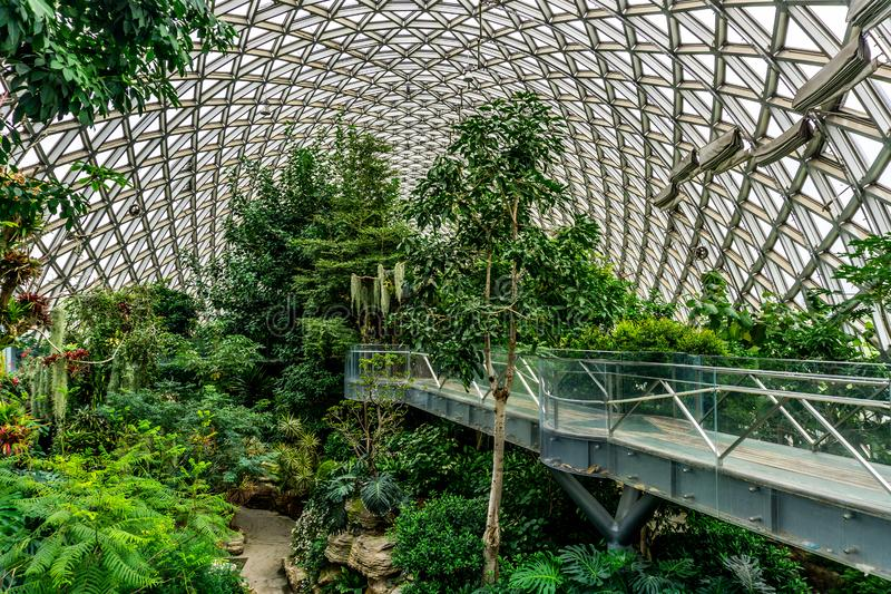 Kina Shanghai botanisk trädgårdväxthus 7 arkivfoton