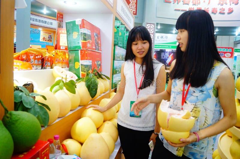 Kina (Shenzhen) internationell modern grön jordbruks- expo arkivbilder