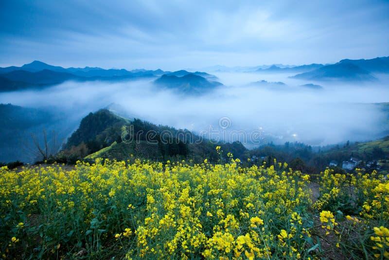 Kina Shitan natur royaltyfri bild