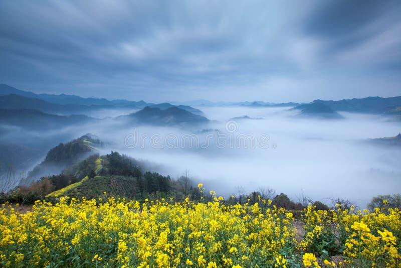 Kina Shitan natur arkivbild