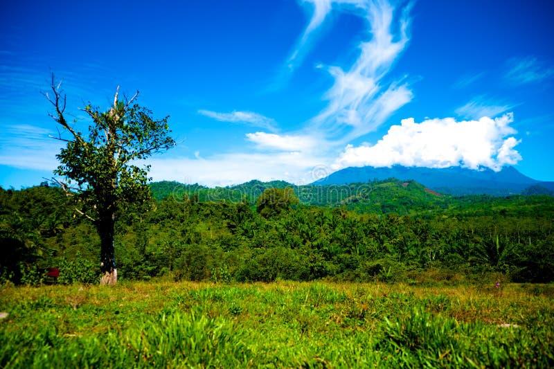 Kinabalu in nuvola fotografie stock libere da diritti