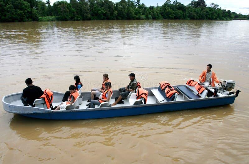 Kinabatangan Fluss-Safari lizenzfreies stockbild