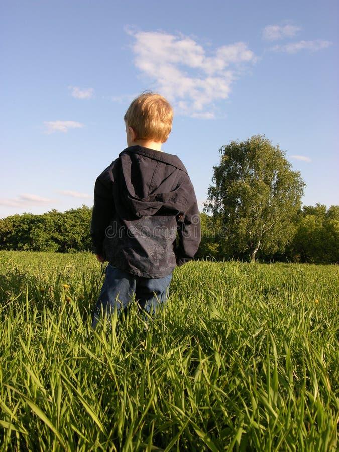 Kind auf Wiese stockfotos