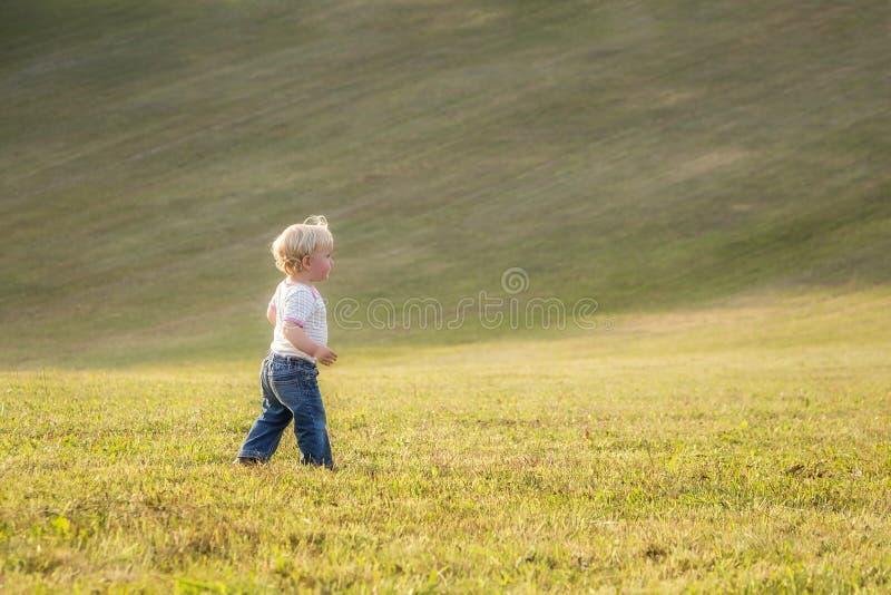 Kind, babymeisje die, peuter, alleen lopen stock fotografie
