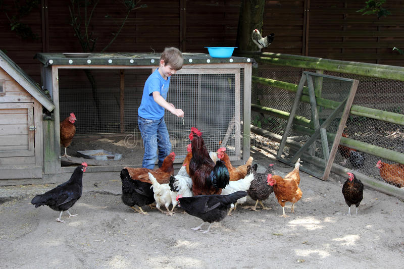 Kind bij landbouwbedrijf royalty-vrije stock fotografie