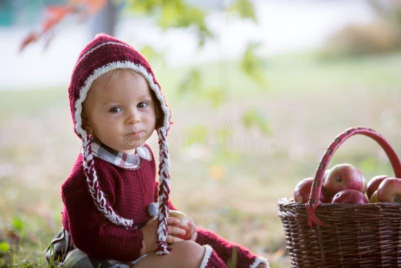 Kind, das Äpfel in einem Dorf im Herbst isst Wenig Babyspiel stockbild