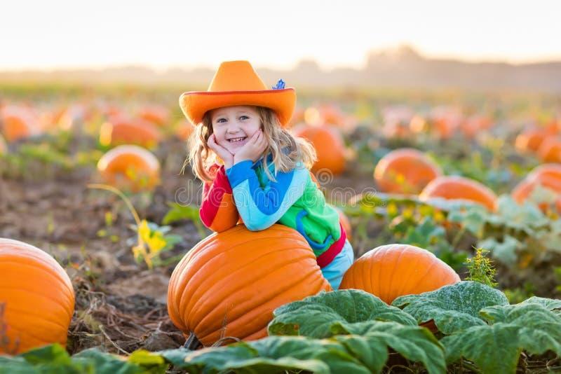 Kind, das auf Kürbisflecken spielt lizenzfreies stockfoto