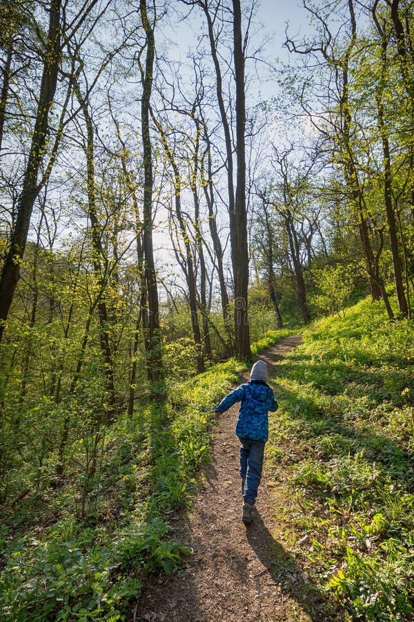 Kind, das im Frühjahr Wald laufen lässt stockfotos