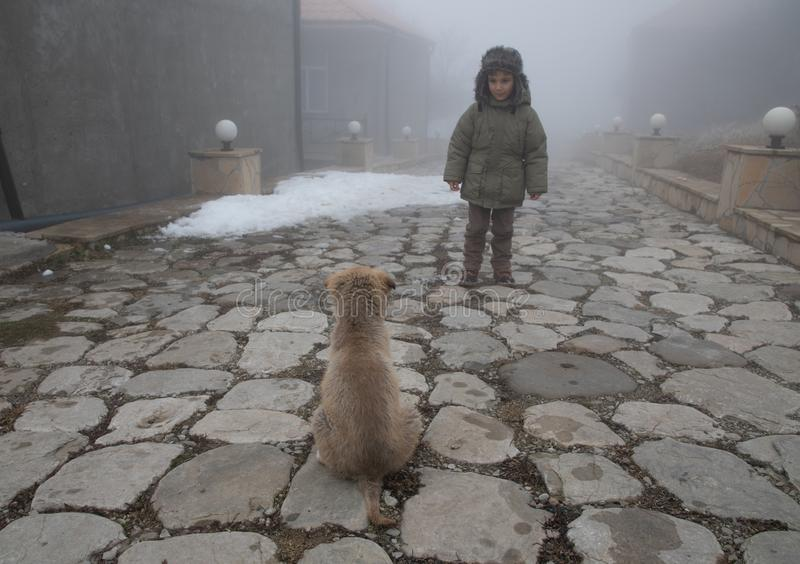 Kind, das Kanaillehündchen am nebeligen Tag betrachtet reizende nette Szene lizenzfreie stockbilder