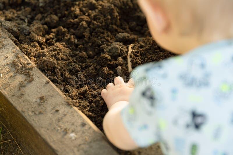Kind, das Tomatens?mlinge im Gew?chshaus pflanzt Organisches Gartenarbeit- und Wachstumskonzept stockfoto