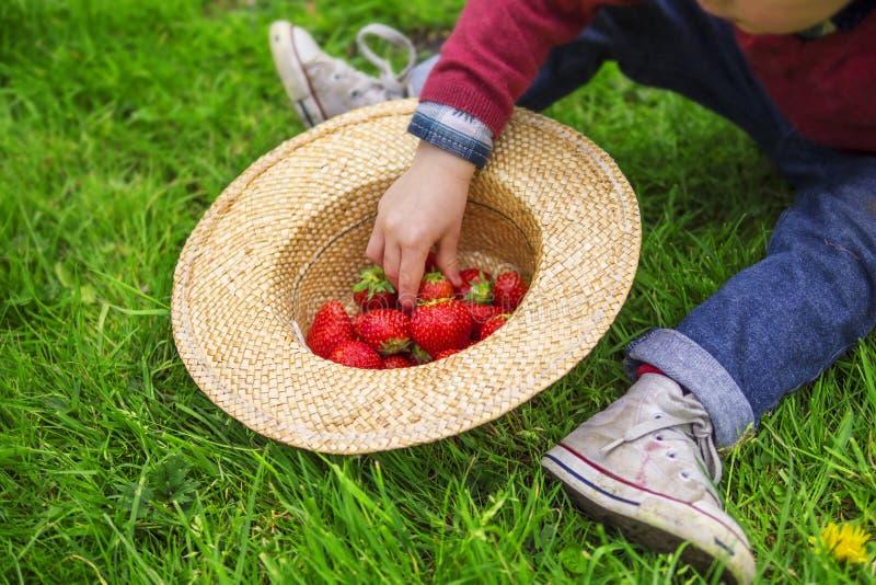 Kind dat aardbeien eet royalty-vrije stock afbeeldingen