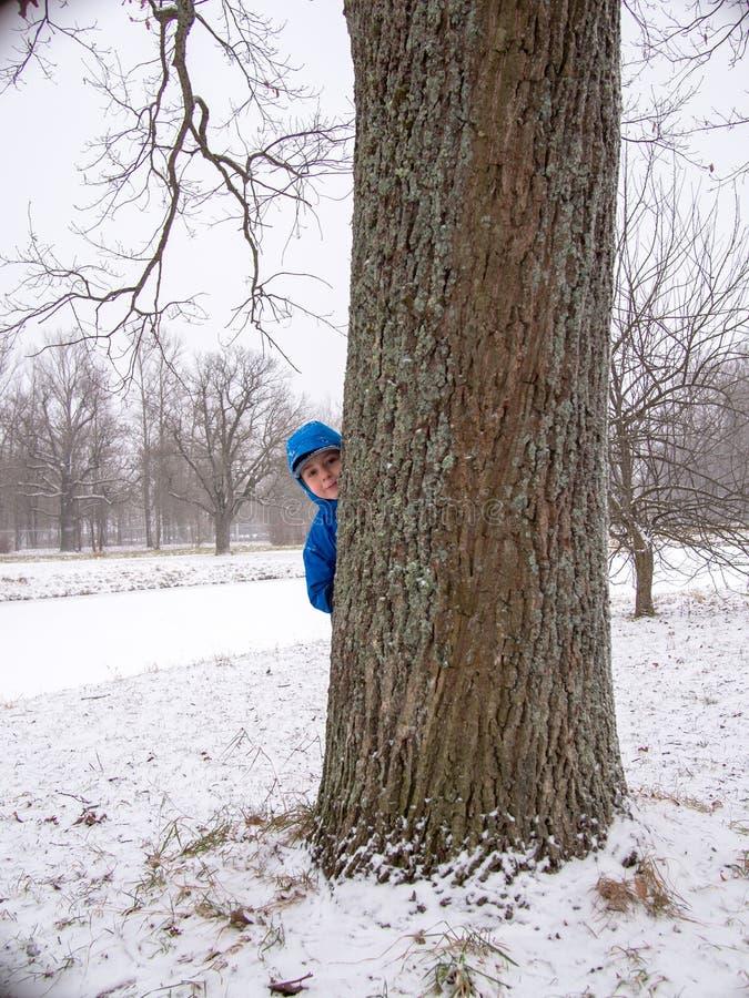 Kind dat achter een boom wordt verborgen royalty-vrije stock afbeelding