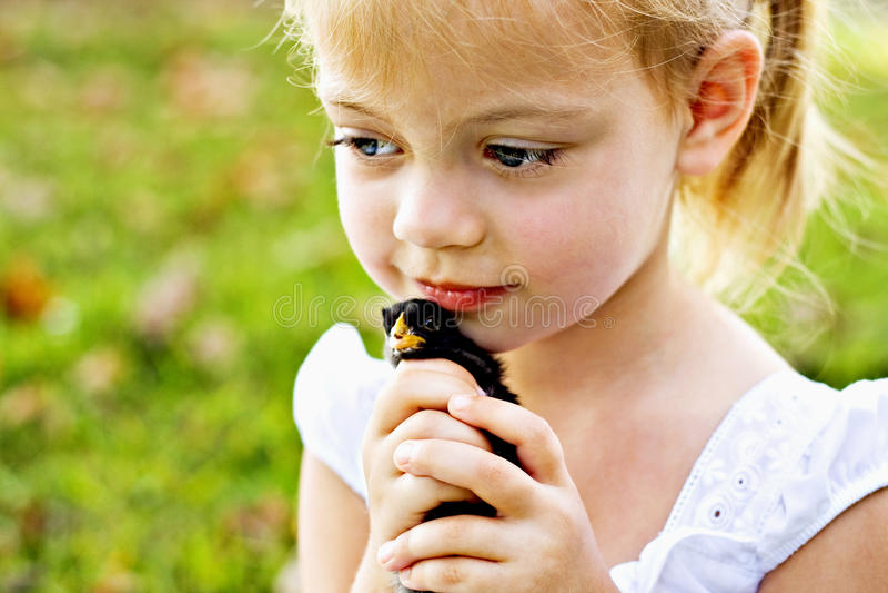 Kind dat een klein kuiken houdt royalty-vrije stock afbeeldingen