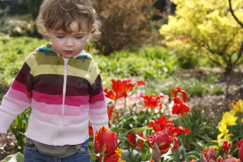 Kind in de tuin royalty-vrije stock fotografie
