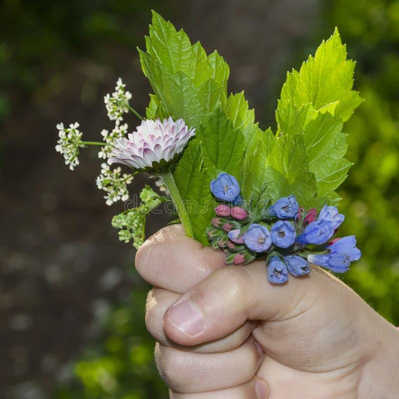 Kind die een boeket van wilde bloemen houden stock fotografie