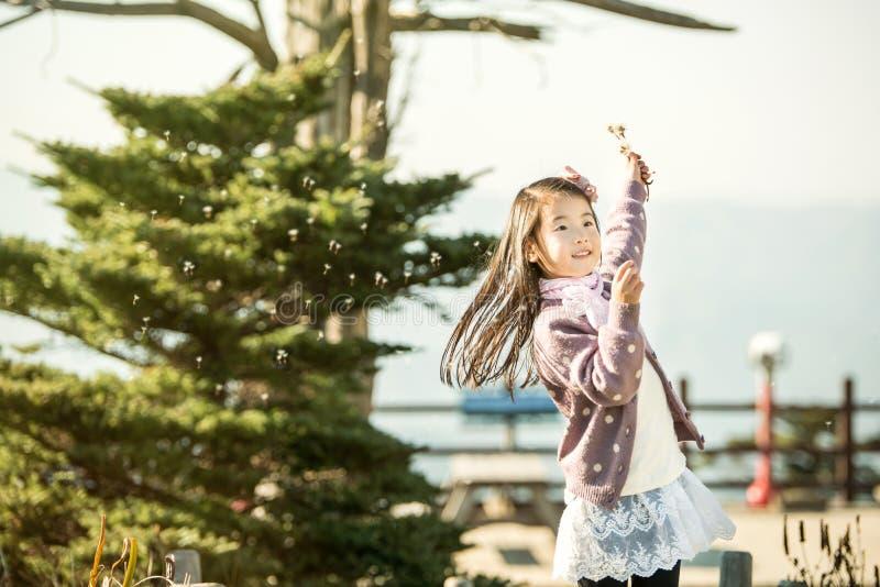Kind die een paardebloem in een park blazen stock foto