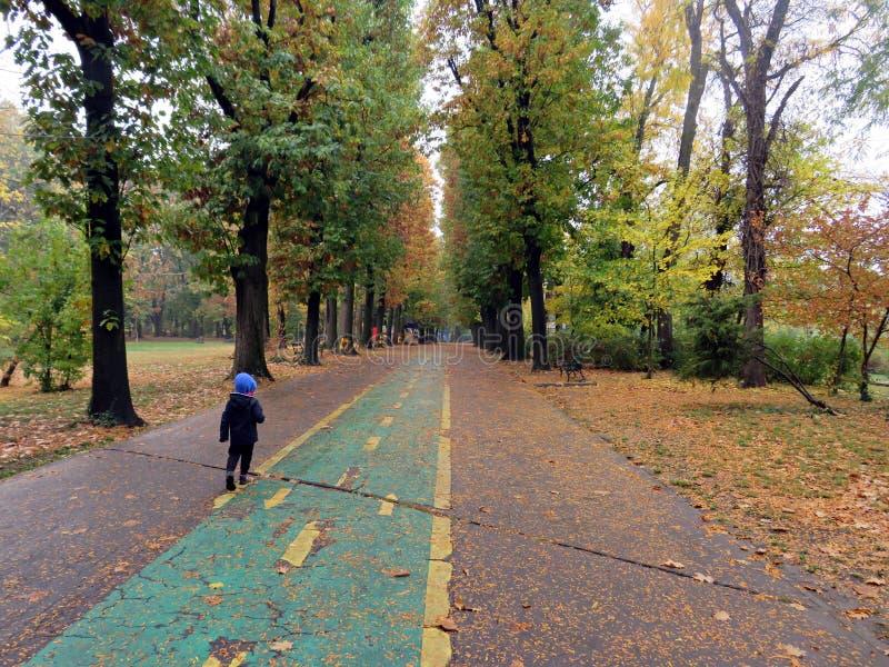 Kind die in het park lopen - dalingsseizoen stock fotografie