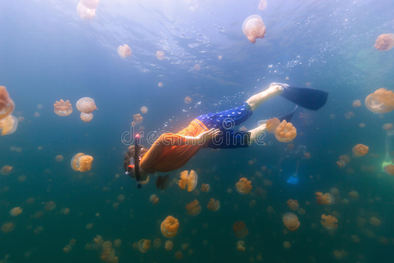Kind die in Kwallenmeer snorkelen stock afbeelding