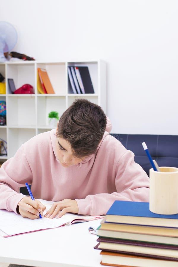 Kind die thuis bestuderen stock foto's