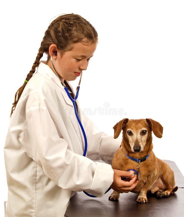 Kind die Veterinaire Arts With Dog spelen stock foto