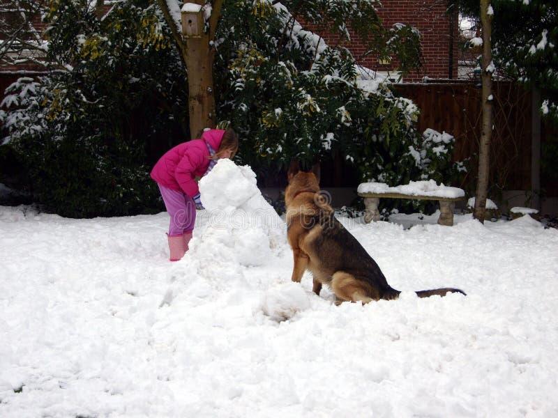 Kind en Hond de Sneeuwmanbouw stock foto