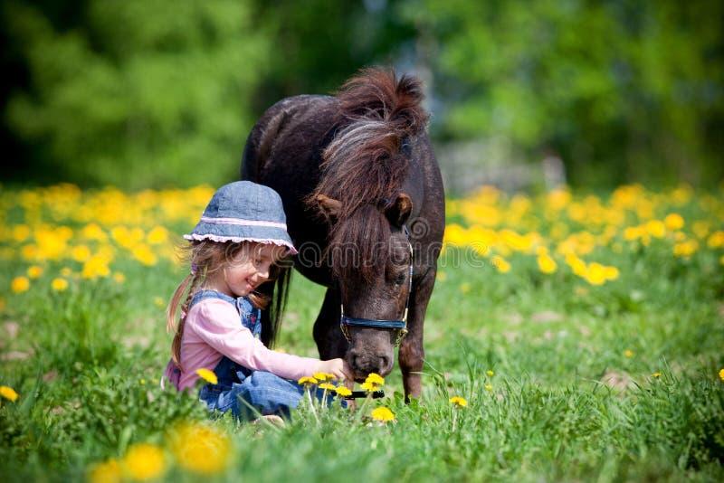 Kind en klein paard op gebied stock foto's