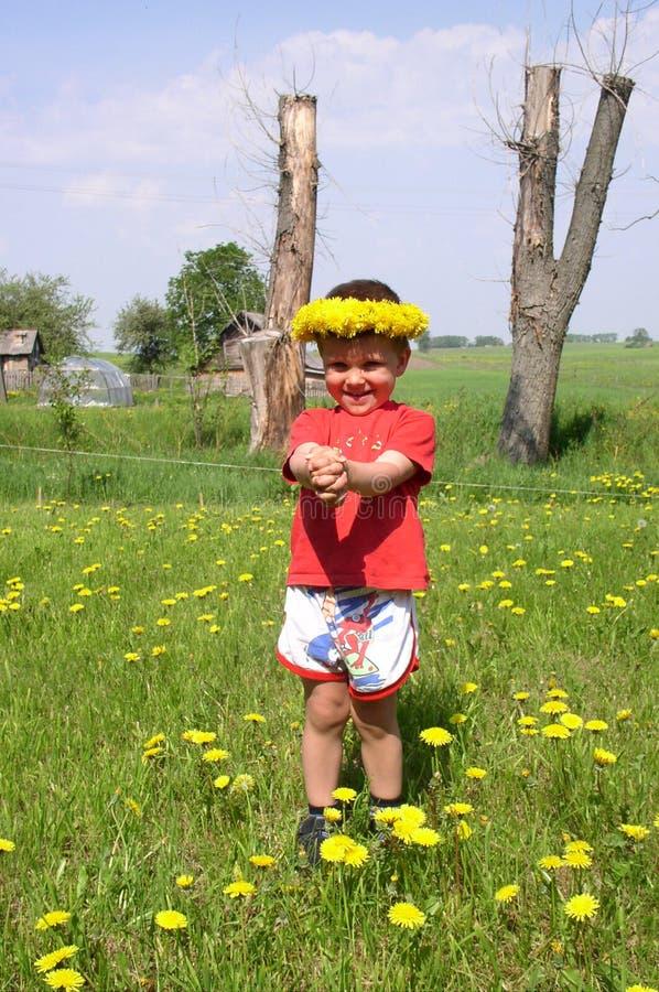 Kind en Paardebloemen stock afbeeldingen
