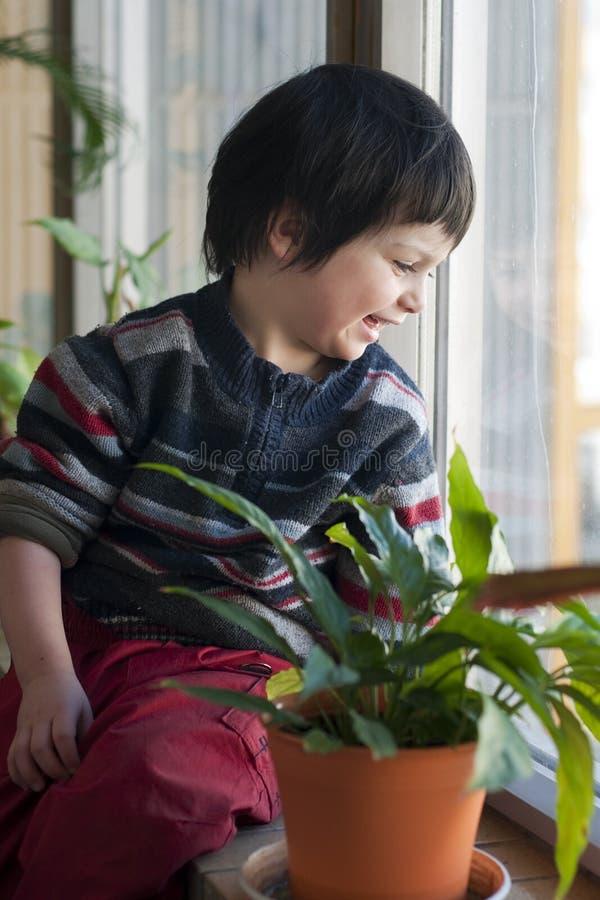 Kind am Fenster stockbilder