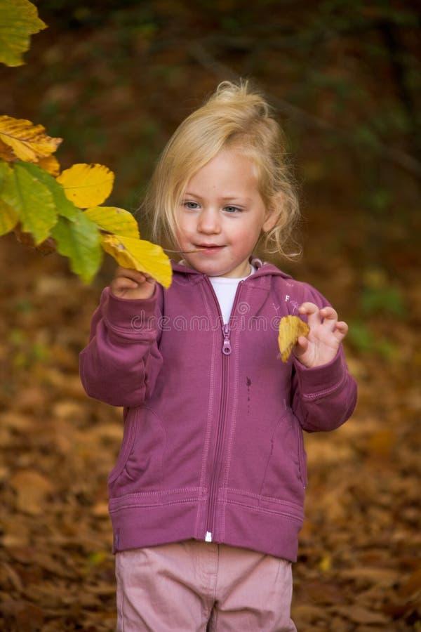 Kind met bladeren royalty-vrije stock foto's